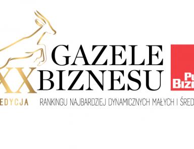 GNP Magnusson ponownie z tytułem Gazeli Biznesu